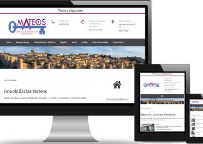 Portal inmobiliario inmobiliariasmateos